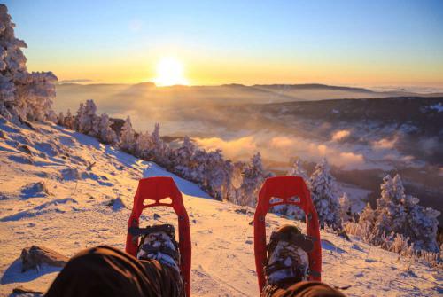 Sneeuwschoenen op berg